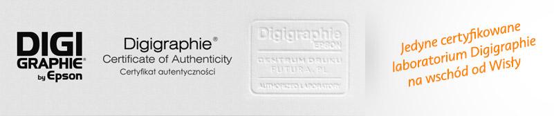 Wydruki wielkoformatowe, Certyfikat Epson Digigraphie